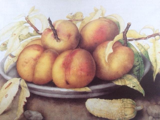 Garzoni peaches